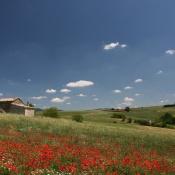 Il Paesaggio