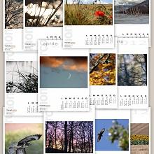Il Mio Calendario 2012
