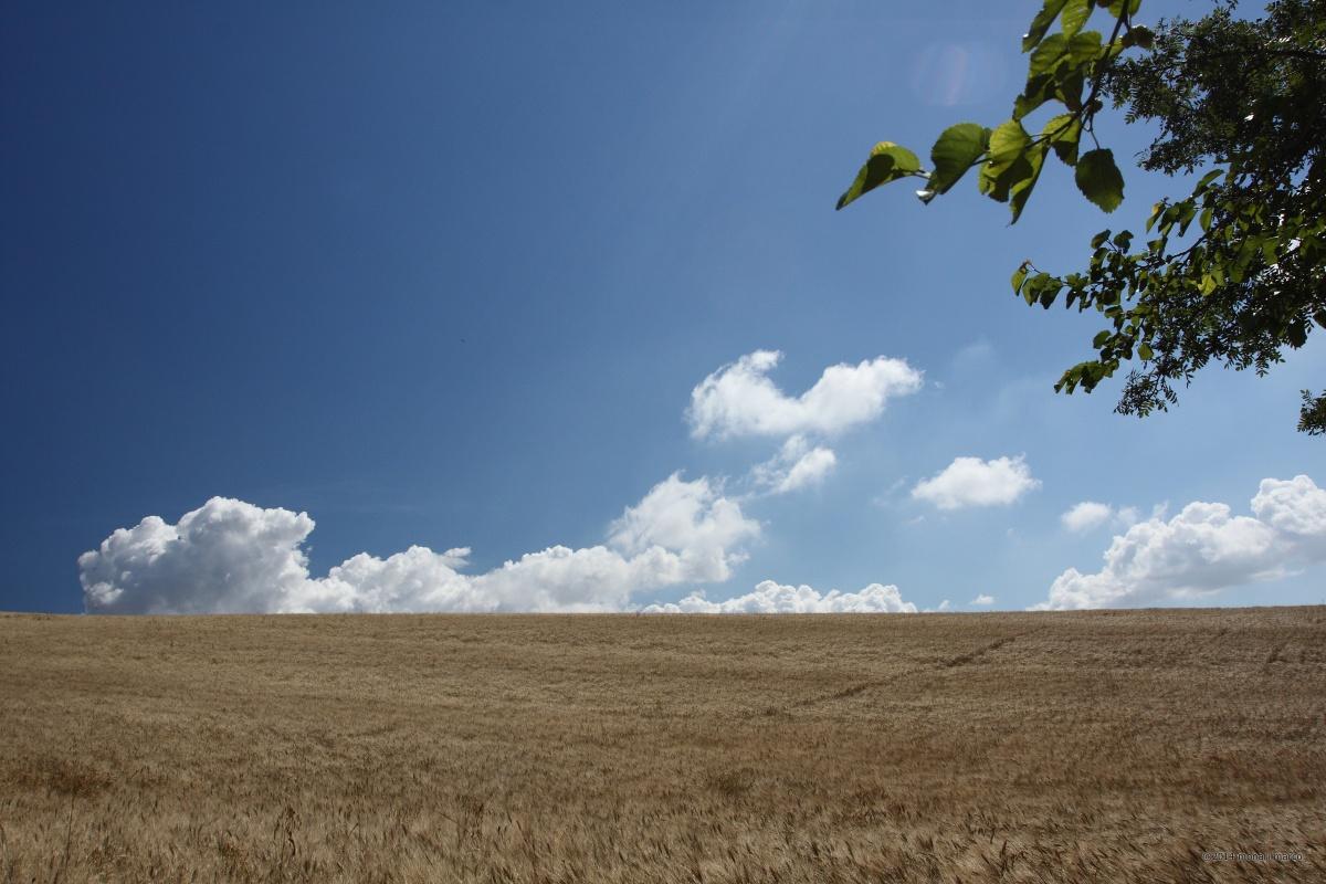 C.da Bellopagliaro, sguardo verso NE. Territorio sito nel Comune di San Bartolomeo in Galdo BN Italy.