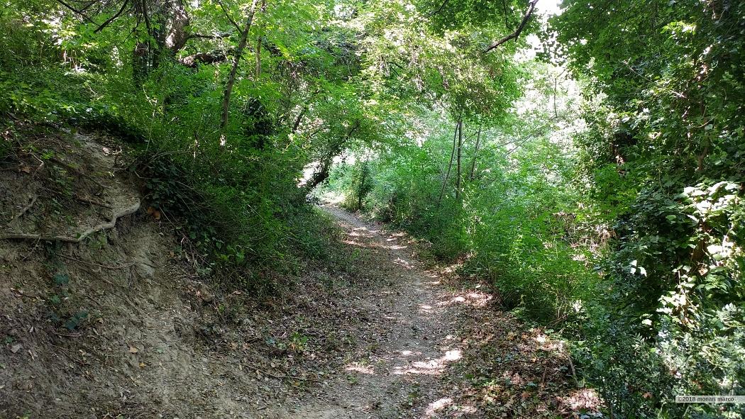 Inizio del sentiero la Foianese.