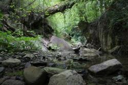 Ormai verso l'uscita... - Vallone Muccillo. Territorio sito nel Comune di San Bartolomeo in Galdo BN Italy.