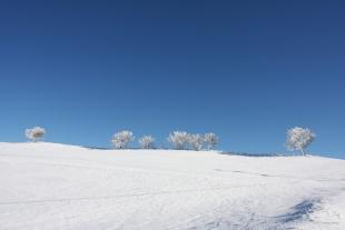 Il sole dopo la tempesta - Dalla C.da Forca Vecchia, sguardo verso Monte Taglianaso, in direzione S. Territorio sito nel Comune di San Bartolomeo in Galdo BN Italy.