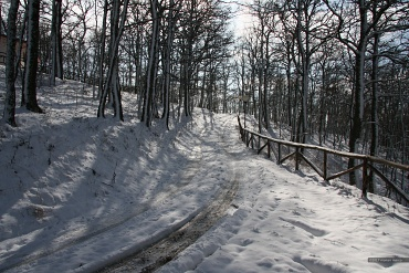 Inverno 2010 - Sito nel territorio del Comune di San Bartolomeo in Galdo BN Italy.